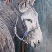 Little Donkey-glin Fair Art Print