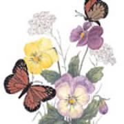 Little Heartsease Art Print