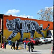 Little India In Jersey City-white Tiger Mural Art Print