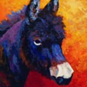 Little Jack - Burro Art Print