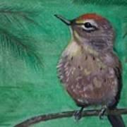 Little Warbler Art Print