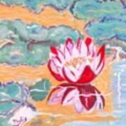 Little Water Lilly  Art Print