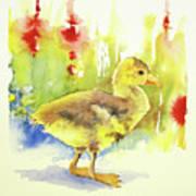 Little Yellow Duck Art Print