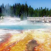 Live Dream Own Yellowstone Park Black Pool Text Art Print