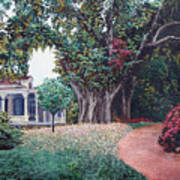 Live Oak Gardens Jefferson Island La Art Print