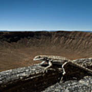 Lizard Crater Art Print