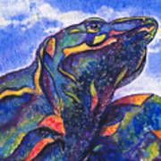 Lizard In The Desert 2 Art Print
