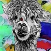 Llama And Lady In Splash Art Print