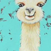 Llama Sue Art Print