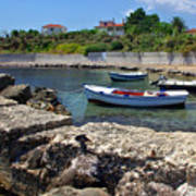 Local Boats In Harbour Art Print