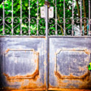 Locked Gate With Trees Art Print