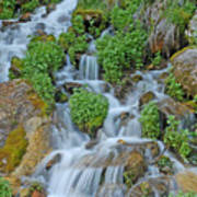 Logan Canyon Cascade Art Print