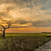 Lone Cedar Dock Sunset - Dewees Island Art Print