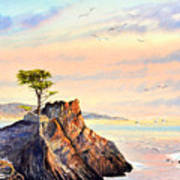 Lone Cypress Tree Pebble Beach Art Print