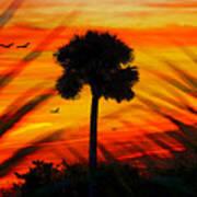 Lone Palm Florida Art Print