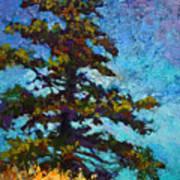 Lone Pine II Art Print by Marion Rose