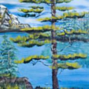 Lone Pine Art Print