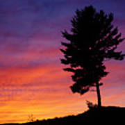 Lone Pine Sunset Art Print