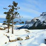 Lone Pines On Lakeshore Art Print