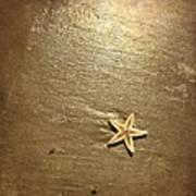 Lone Starfish On The Beach Art Print