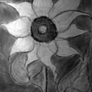 Lone Sunflower Iv Art Print