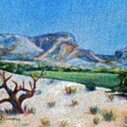 Lone Tree At The Ghost Ranch Art Print