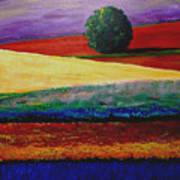 Lone Tree In Flower Fields Of Provence Art Print