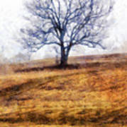 Lone Tree On Hill In Winter Art Print