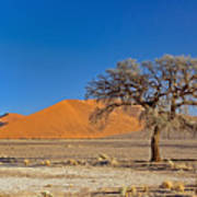 Lonely Tree In Sossusvlei Art Print