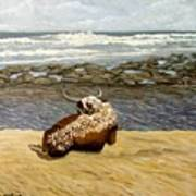 Lonesome Nguni Art Print