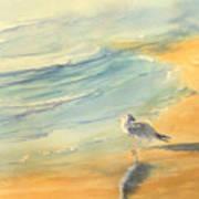 Long Beach Bird Art Print