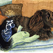 Long-haired Dachshund Watercolor Art Print