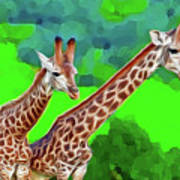 Long Necked Giraffes 3 Art Print