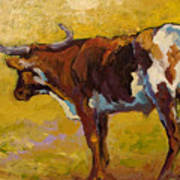 Longhorn Study Art Print by Marion Rose