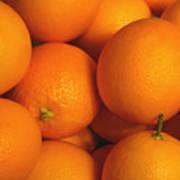 Lots Of Oranges Art Print