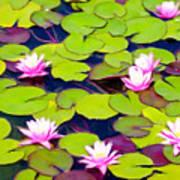 Lotus Blossom Lily Pads Art Print