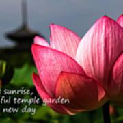 Lotus - Haiku Art Print