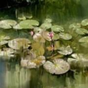 Lotus Pond 1 Art Print