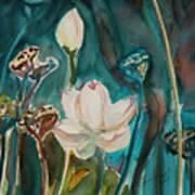 Lotus Study I Art Print