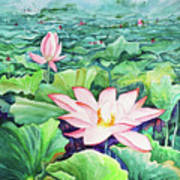 Lotus_01 Art Print
