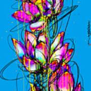 Lotuses  Art Print