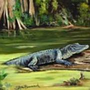 Louisiana Gator Art Print