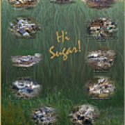 Louisiana Sugar Cane Poster 2008-2009 Art Print