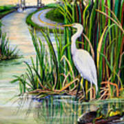 Louisiana Wetlands Print by Elaine Hodges