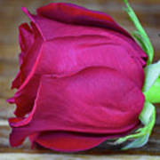 Love By Rose  Art Print