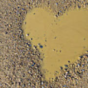 Love In A Muddy Puddle Art Print by Meirion Matthias