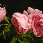 Love Is ........ Art Print