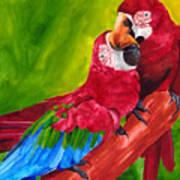 Love Macaws Art Print