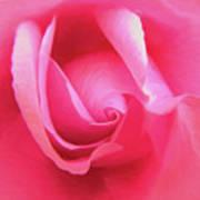 Love Pink Art Print