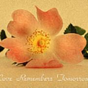 Love Remembers Tomorrow Art Print